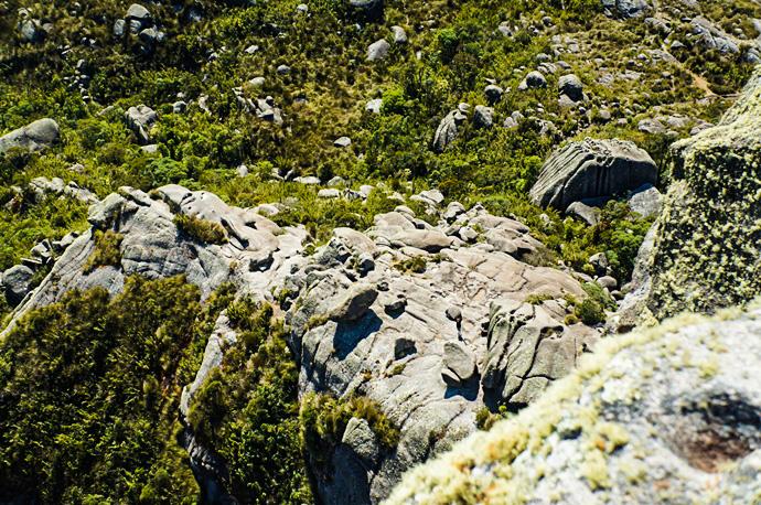 Vista da subida do Prateleiras no Parque Nacional de Itatiaia