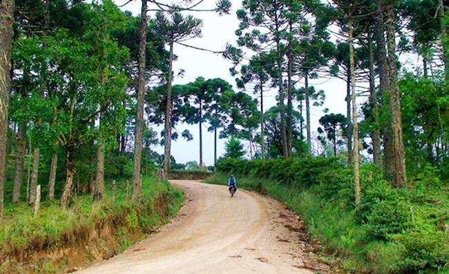 Passeio de bike no Circuito das Araucárias - SC
