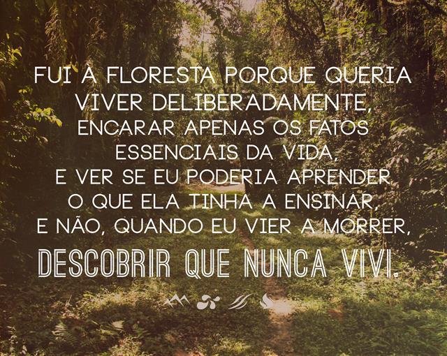 frase_de_aventura_3_fui_a_floresta_porque_queria_viver_deliberadamente,_encarar_apenas_os_fatos_essenciais_da_vida_e_ver_se_eu_poderia_aprender_o_que_ela_tinha_a_ensi.jpg
