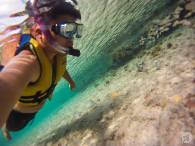 Snorkeling Noronha